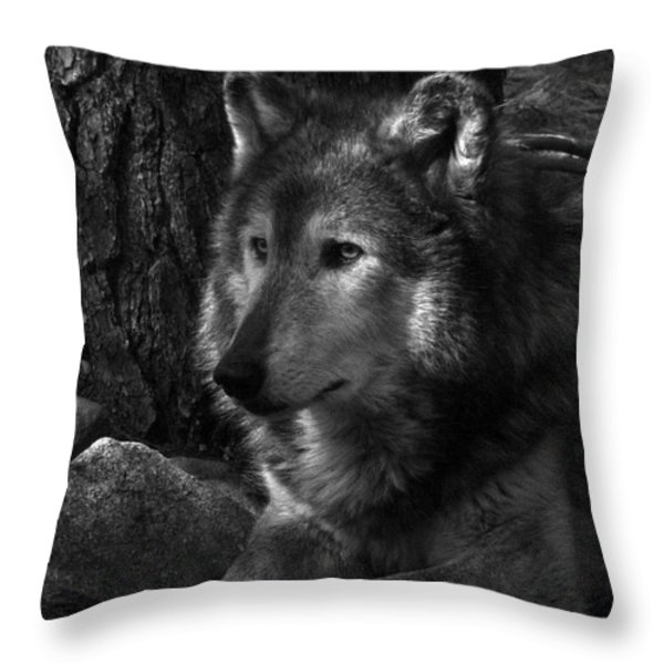 Lone Wolf Throw Pillow by Karol Livote