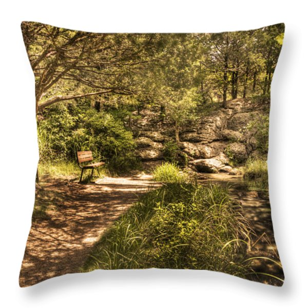 Magic Bench Throw Pillow by Tamyra Ayles