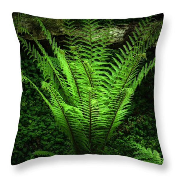 Magic Fern Throw Pillow by Svetlana Sewell