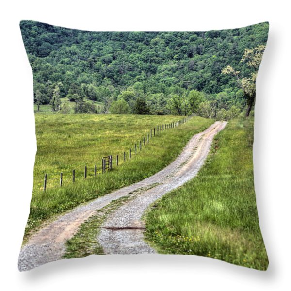 Meet Me At The Tree Throw Pillow by JC Findley