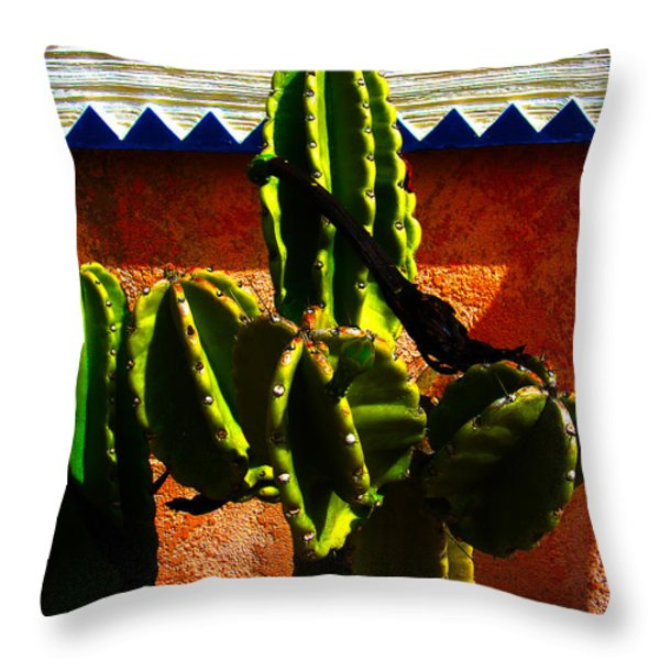 Mexican Style  Throw Pillow by Susanne Van Hulst