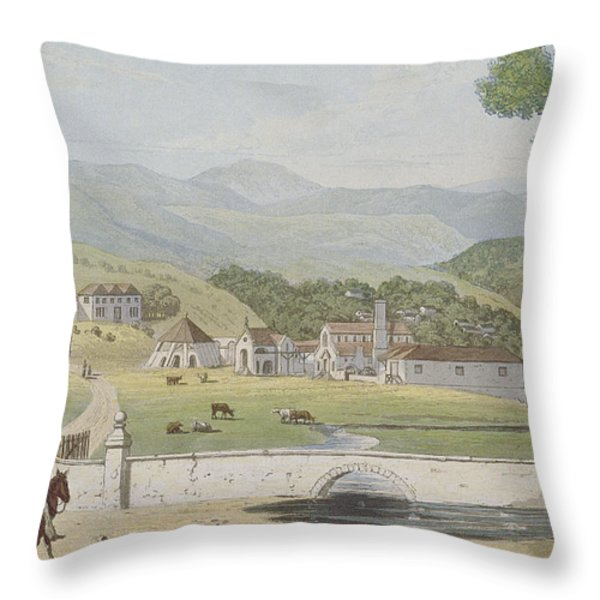 Montpelier Estates - St James Throw Pillow by James Hakewill