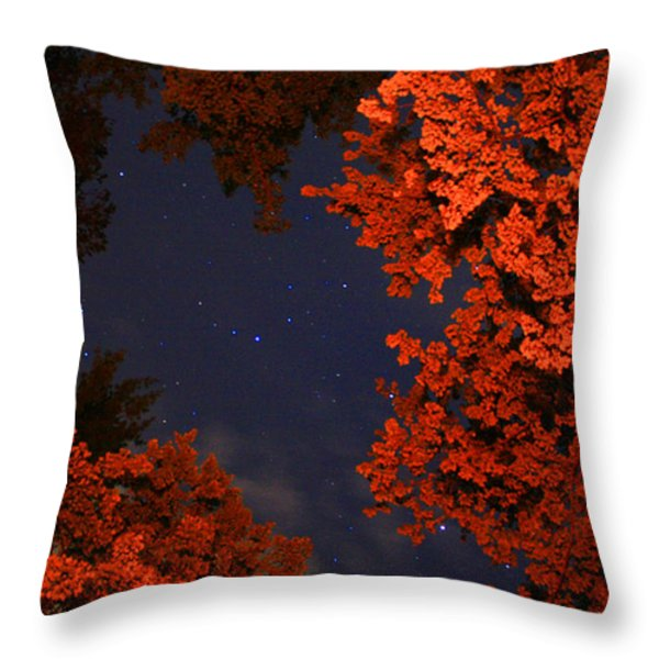 Night Sky By The Campfire Throw Pillow by Gray  Artus