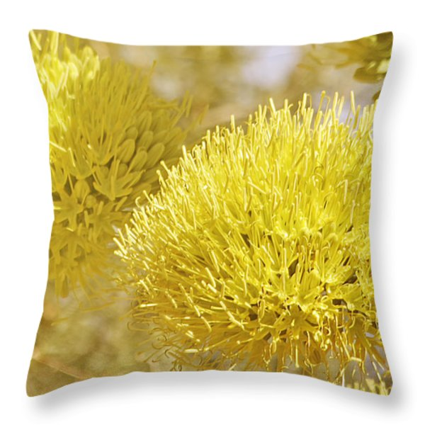 Once In A Lifetime Throw Pillow by Christine Till