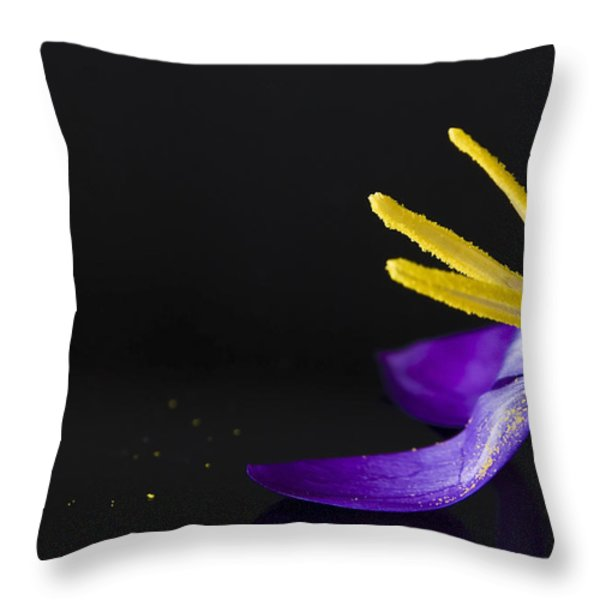 One Flower Throw Pillow by Svetlana Sewell