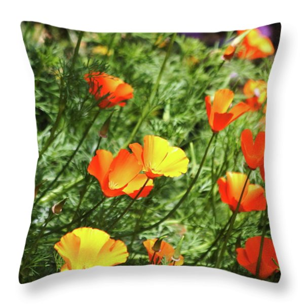 Orange Poppy Flowers . R1269 Throw Pillow by Wingsdomain Art and Photography