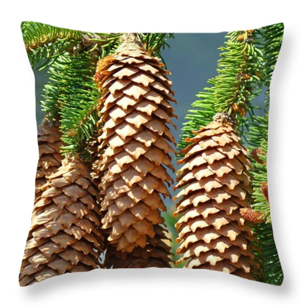 Pine Cones Art Prints Conifer Pine Tree Landscape Baslee Troutman Throw Pillow by Baslee Troutman