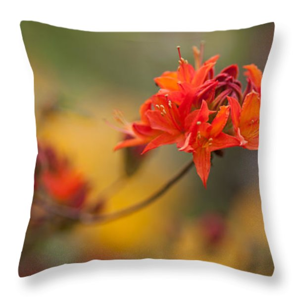 Potential Throw Pillow by Mike Reid