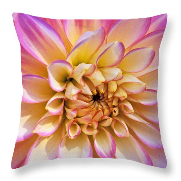Pretty In Pink Dahlia Throw Pillow by Kathy Yates