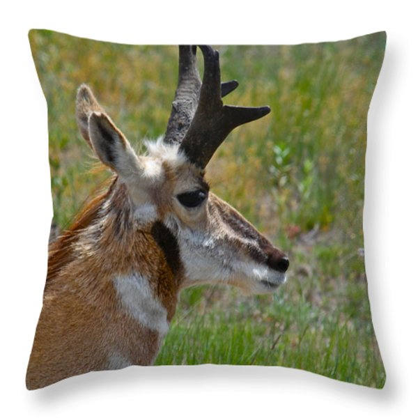Pronghorn Buck Profile Throw Pillow by Karon Melillo DeVega