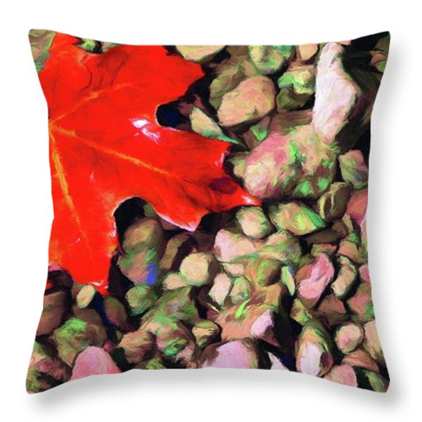 Red On The Rocks Throw Pillow by Jeff Kolker