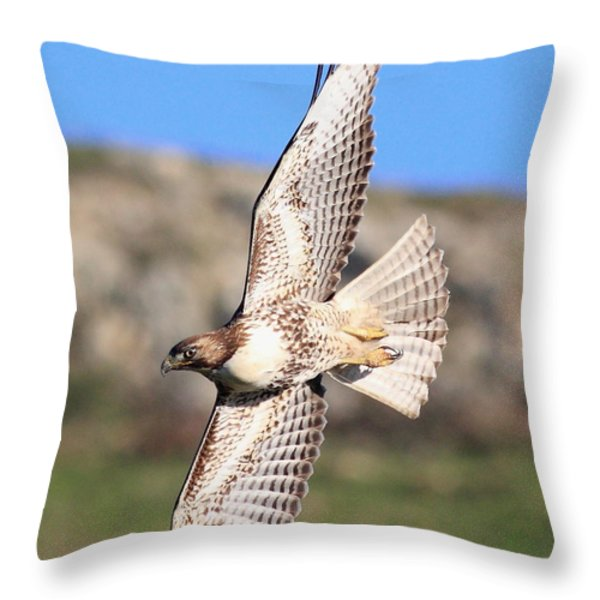 Red Tailed Hawk - 20100101-8 Throw Pillow by Wingsdomain Art and Photography
