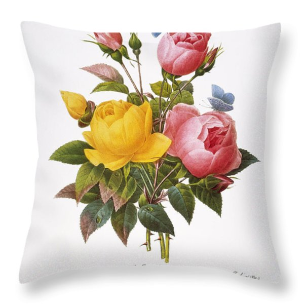 Redoute: Roses, 1833 Throw Pillow by Granger