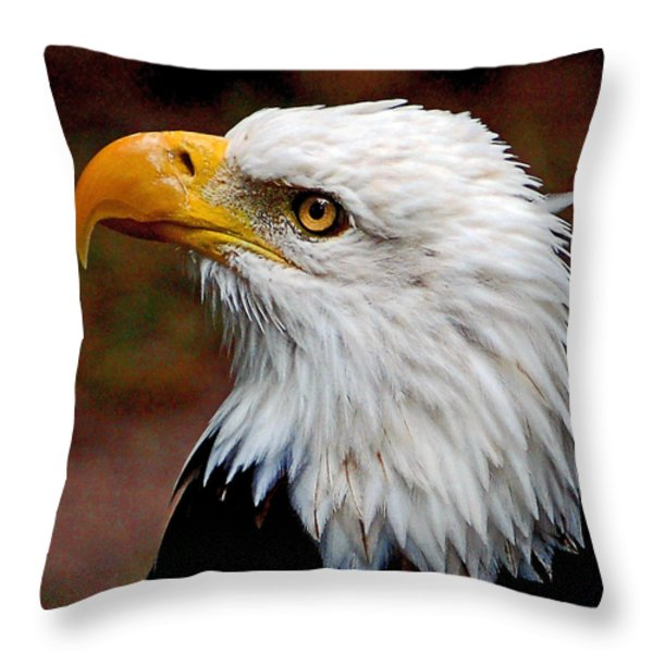 Reminiscent Bald Eagle Throw Pillow by Donna Proctor