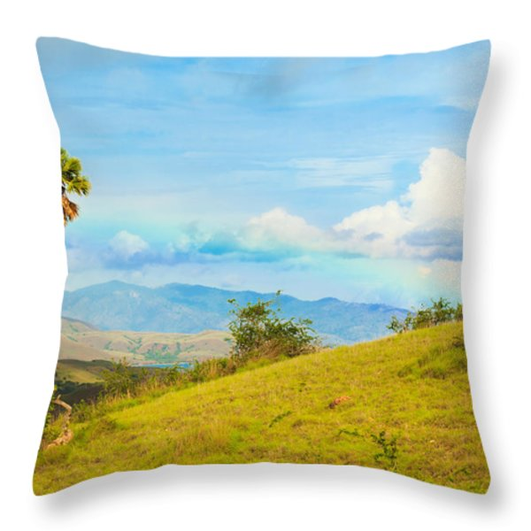 Rinca Island. Throw Pillow by MotHaiBaPhoto Prints