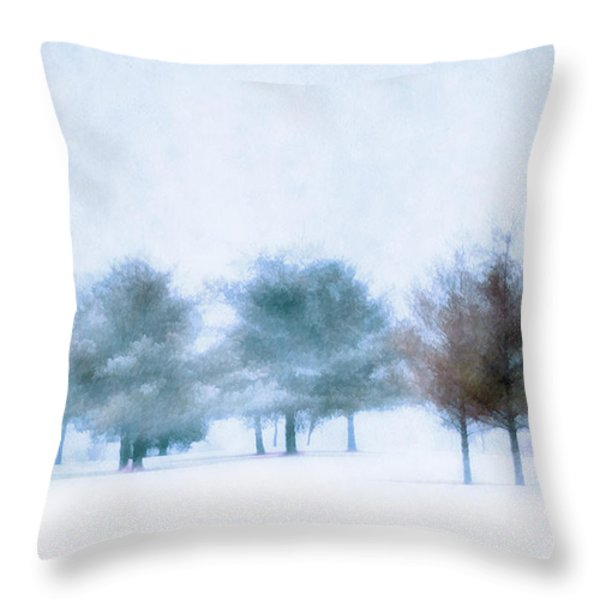 Snow Moon Throw Pillow by Darren Fisher