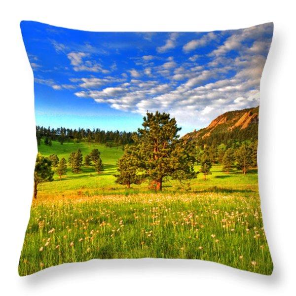 Spiritual Sky Throw Pillow by Scott Mahon