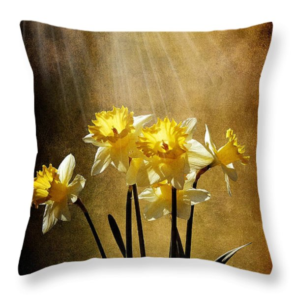 Spring Sun Throw Pillow by Lois Bryan