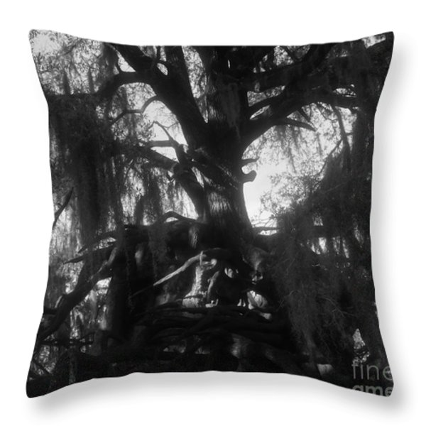 Standing Tall Throw Pillow by David Lee Thompson
