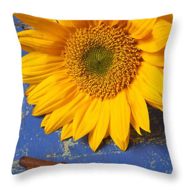 Sunflower And Skeleton Key Throw Pillow by Garry Gay