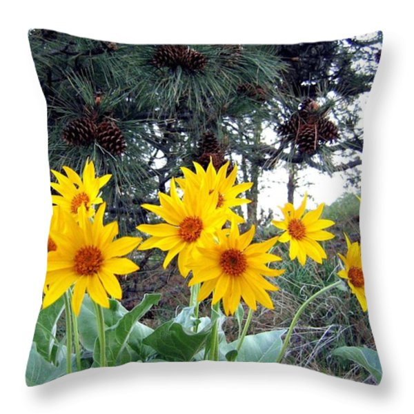 Sunflowers And Pine Cones Throw Pillow by Will Borden