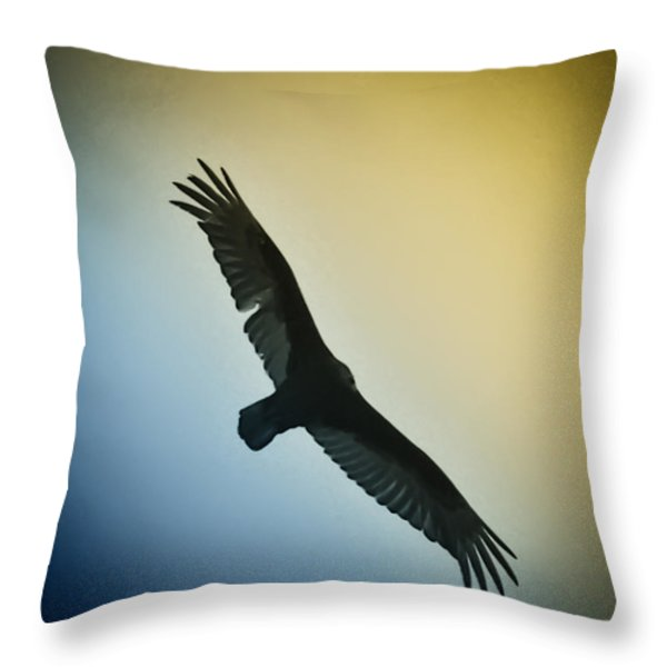 The Hawk Throw Pillow by Bill Cannon