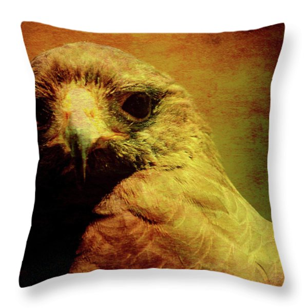 The Hunter . Portrait Of A Hawk . Square . 40d7877 Throw Pillow by Wingsdomain Art and Photography