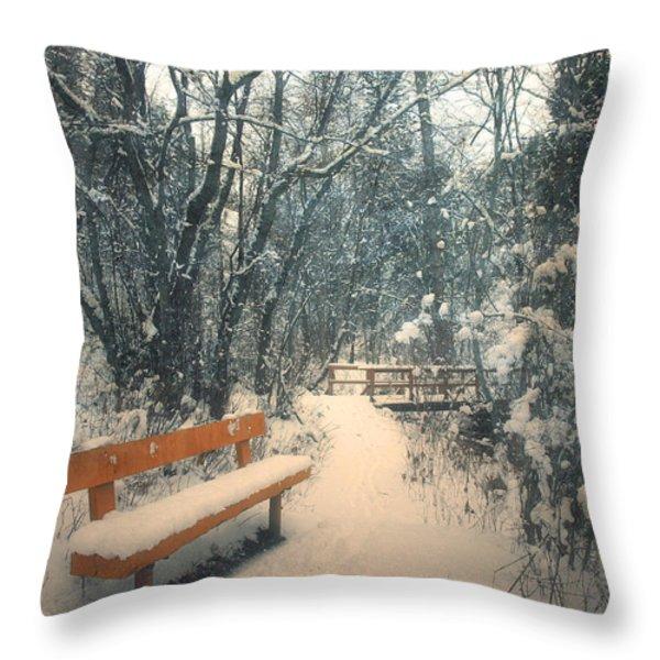 The Orange Bench Throw Pillow by Tara Turner