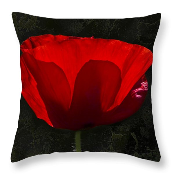 The Poppy Throw Pillow by Svetlana Sewell