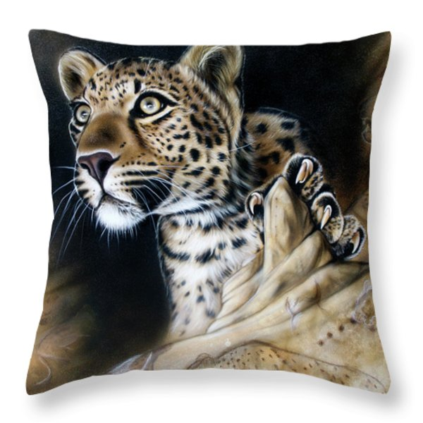 The Source IIi Throw Pillow by Sandi Baker
