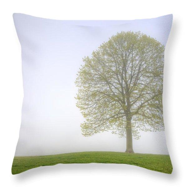Through The Mist Throw Pillow by Scott Norris