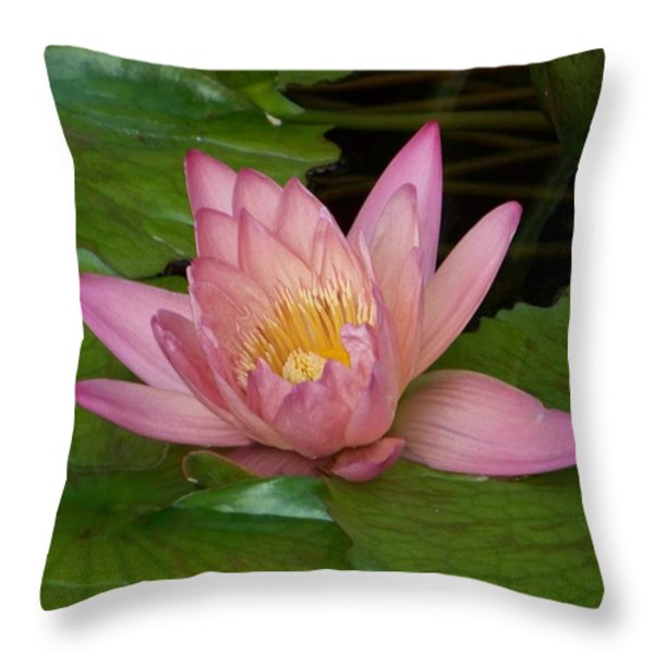 Touch Of Pink Throw Pillow by Karen Wiles