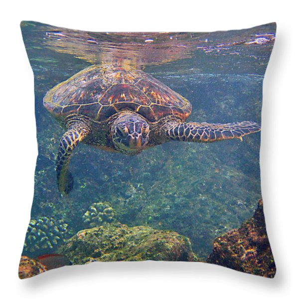Turtle Approaching Throw Pillow by Bette Phelan
