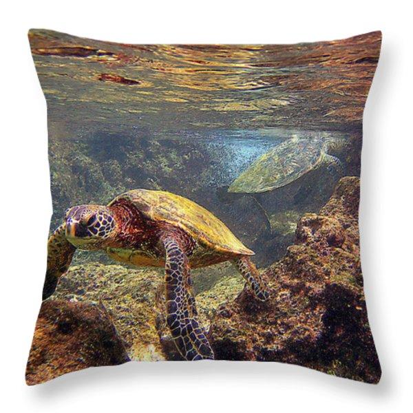 Two Turtles Throw Pillow by Bette Phelan