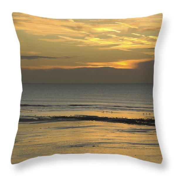 Up At First Light Throw Pillow by Malc McHugh