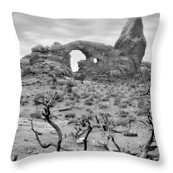 Utah Outback 37 Throw Pillow by Mike McGlothlen