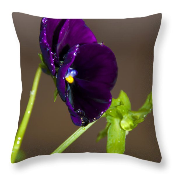 Water Drops Jewellery  Throw Pillow by Svetlana Sewell