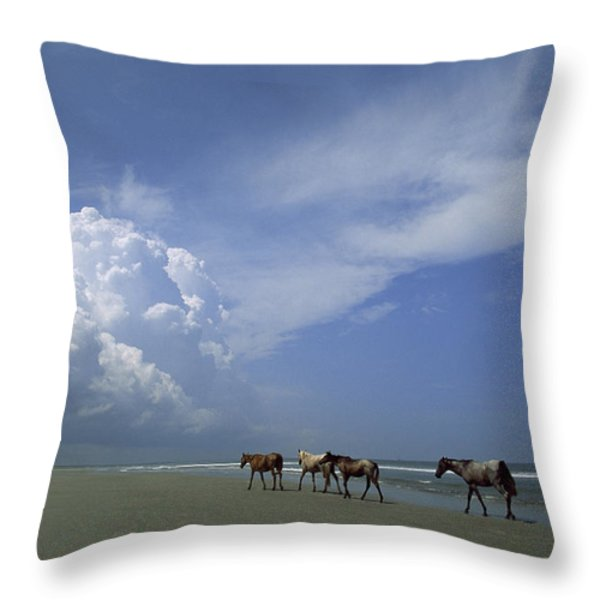 Wild Horses Roaming A Georgia Coast Throw Pillow by Michael Melford