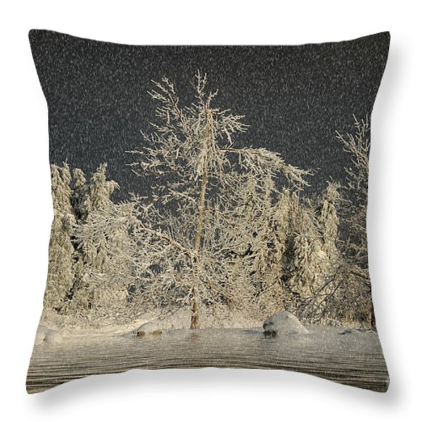 Winter Begins Throw Pillow by Lois Bryan