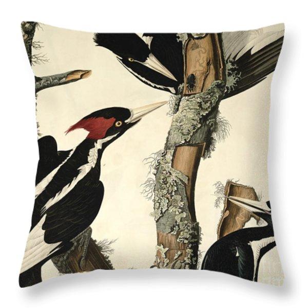 Woodpecker Throw Pillow by John James Audubon
