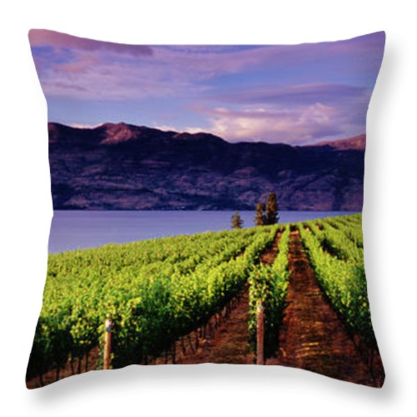 Kelowna Throw Pillows Fine Art America
