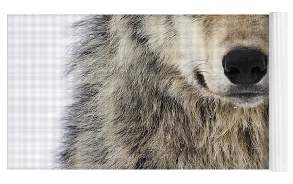 Timber Wolf Portrait Yoga Mat