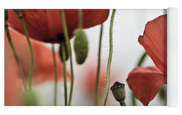 Red Poppy Flowers Yoga Mat by Nailia Schwarz