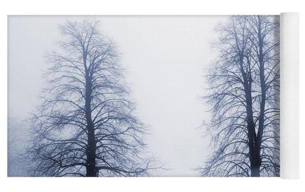 Winter Trees In Fog Yoga Mat