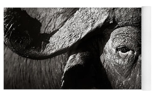 African Buffalo Bull Close-up Yoga Mat