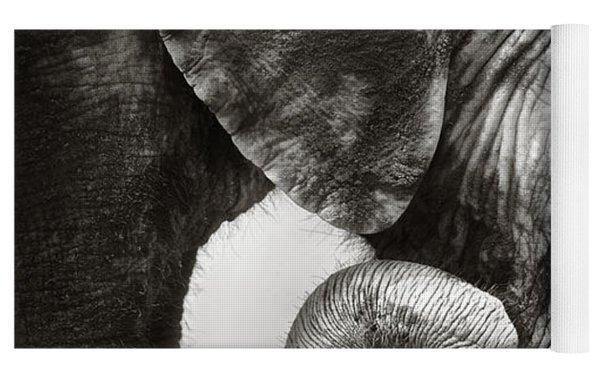 Baby Elephant Seeking Comfort Yoga Mat