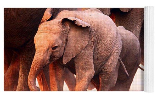 Elephants Stampede Yoga Mat by Johan Swanepoel