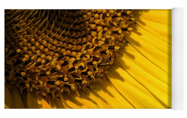 Find The Spider In The Sunflower Yoga Mat by Belinda Greb
