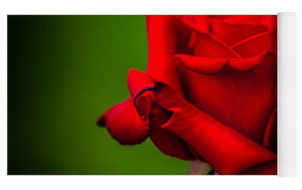 Red Rose Green Background Yoga Mat by Az Jackson