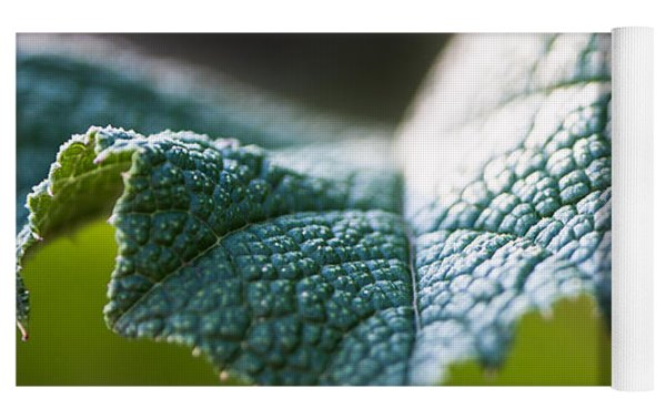 Slice Of Leaf Yoga Mat by John Wadleigh